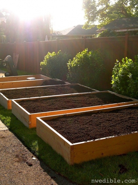 Gallery Of Vegetable Garden Planter Box Photo