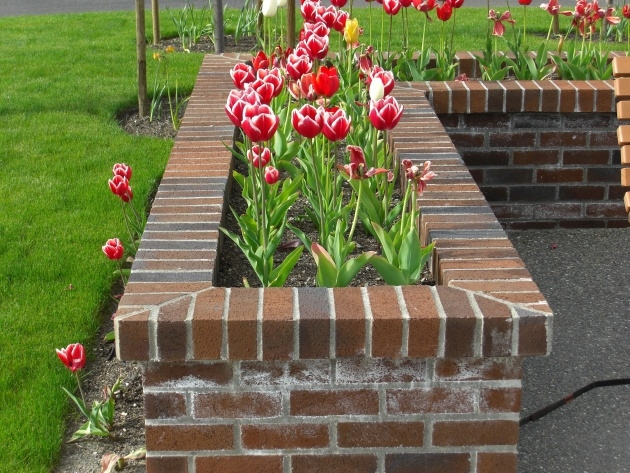 Good Brick Planter Box Image