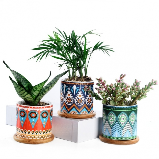 Good Ceramic Plant Pots Picture