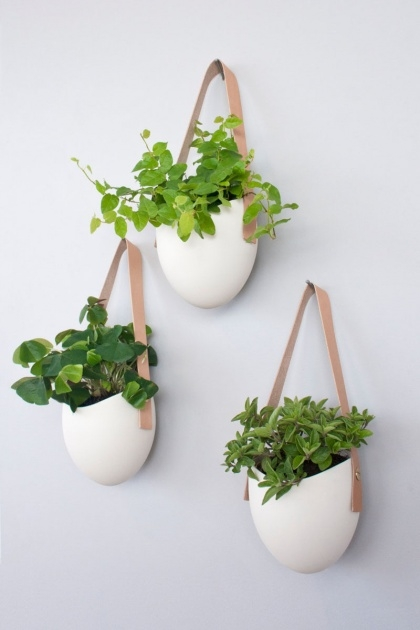 Good Decorative Wall Planters Image