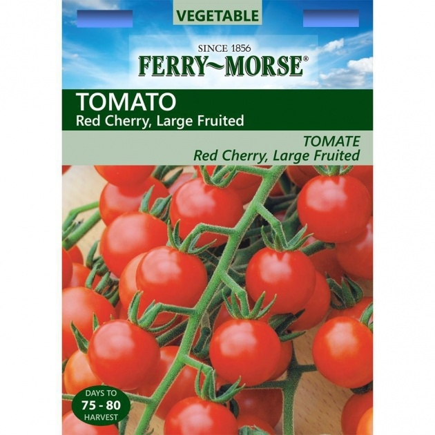 Good Ferry Morse Seed Catalog Picture