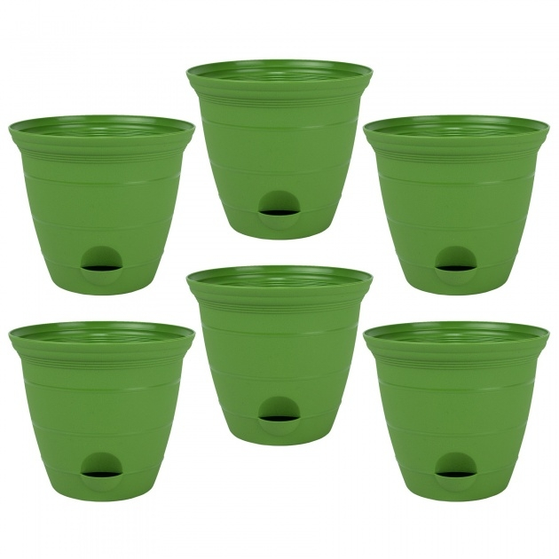 Good Green Plant Pot Picture