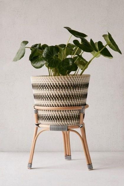Good Large Indoor Plant Pots Image