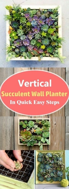 Good Vertical Succulent Planter Photo