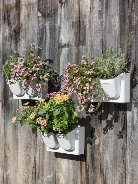 Good Wall Hung Planters Picture