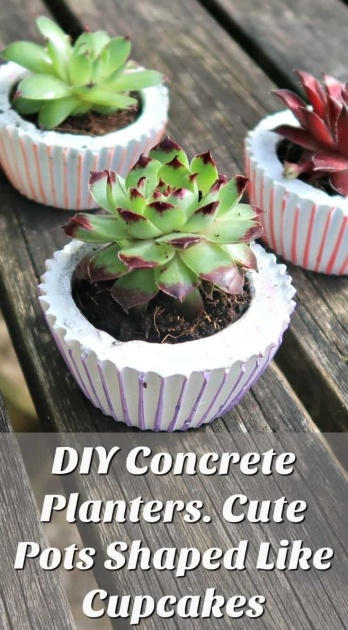Gorgeous Diy Cement Planters Photo