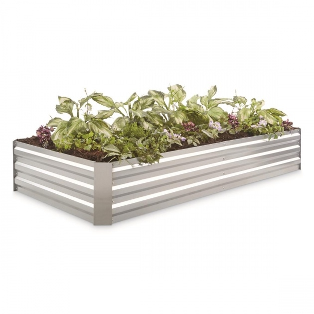 Gorgeous Galvanised Planter Boxes Photo