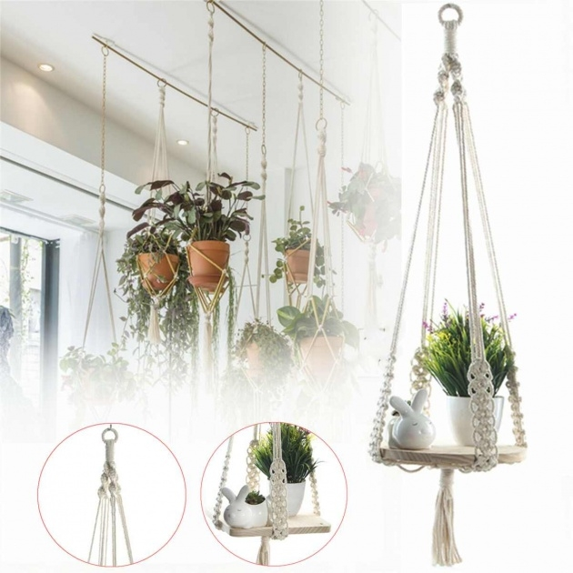 Gorgeous Hanging Plant Decor Picture