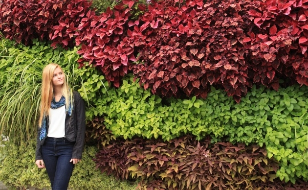 Gorgeous Living Wall Panel Outdoor Planter Picture