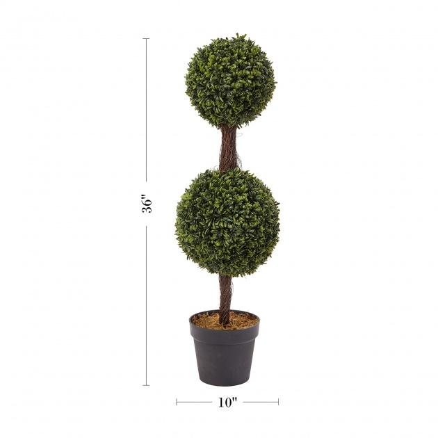 Gorgeous Outdoor Topiary Plants Photo