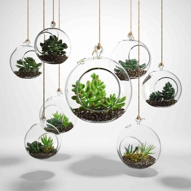 Gorgeous Plants In Glass Bowl Picture