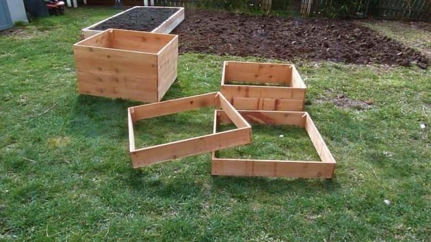 Gorgeous Potato Planter Box Photo