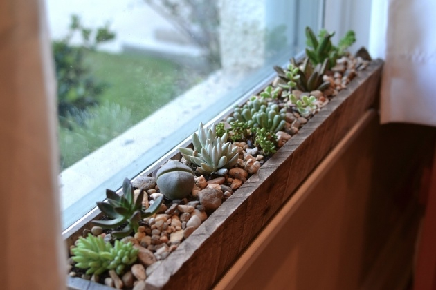 Gorgeous Window Sill Planter Picture