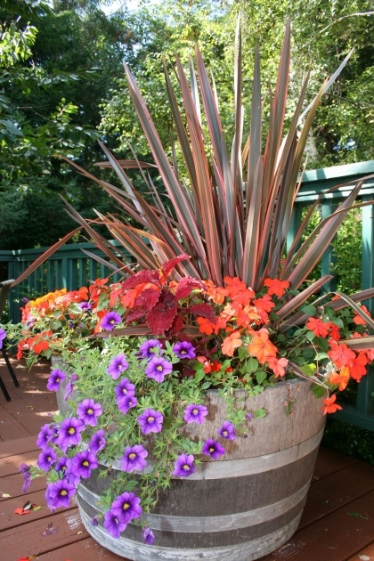 Great Flower Planter Ideas Photo