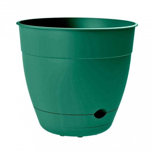 Great Green Plant Pot Image