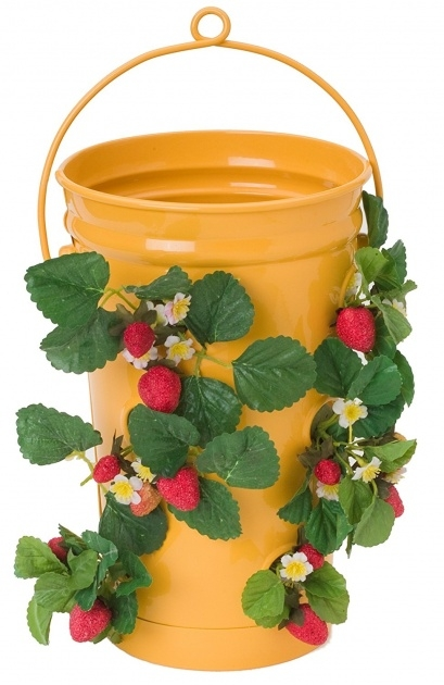Great Hanging Strawberry Planter Photo