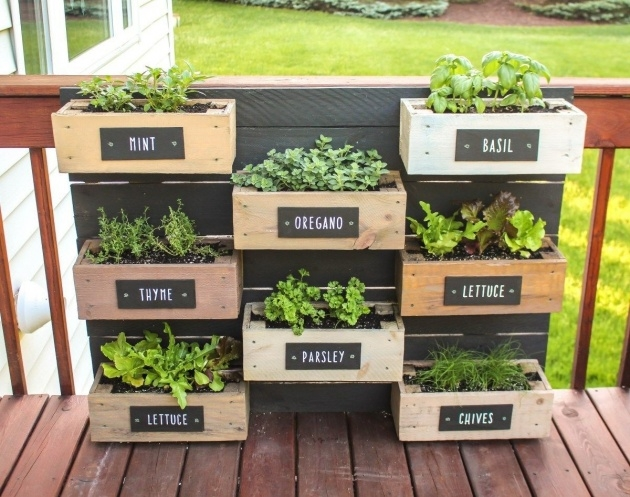 Great Herb Planter Box Picture
