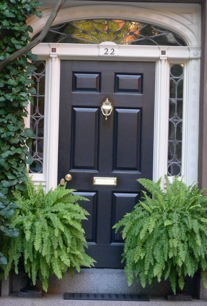 Great Ideas Front Door Plants Image