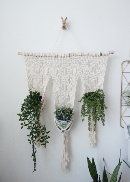 Great Ideas Hanging Wall Planters Indoor Image