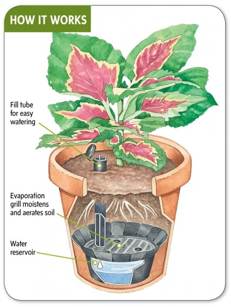 Great Ideas How To Make A Self Watering Planter Picture