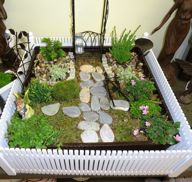 Great Ideas Indoor Miniature Gardens Photo