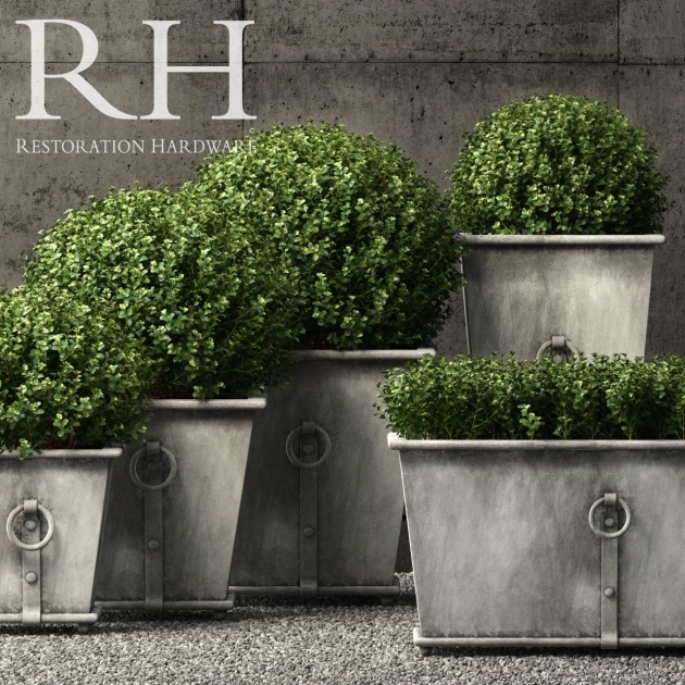Great Ideas Restoration Hardware Planters Image