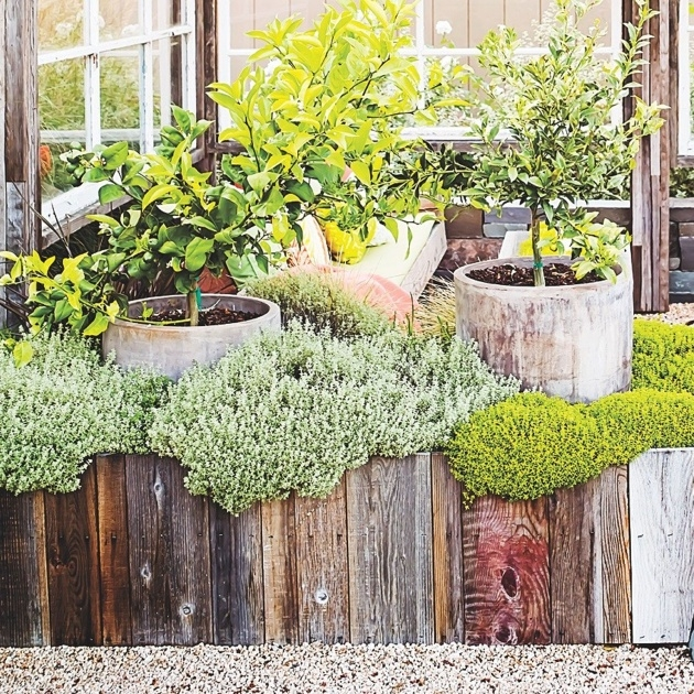 Great Ideas Unique Planter Boxes Picture