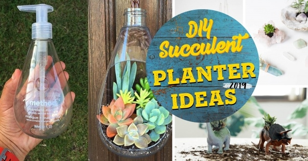 Great Ideas Unique Succulent Planters Photo