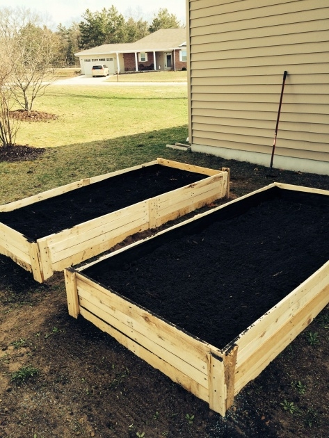 Great Ideas Veggie Planter Boxes Photo