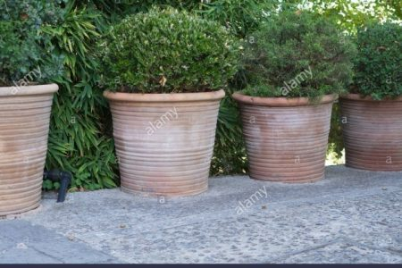 Large Terracotta Planter