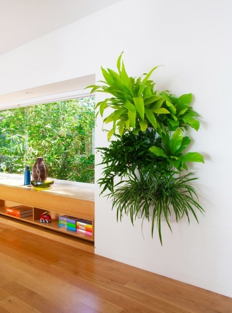 Great Vertical Wall Planter Indoor Photo