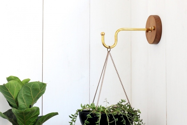 Great Wall Plant Hangers Outdoor Picture