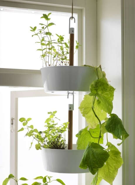 Great Wall Planters Indoor Ikea Picture