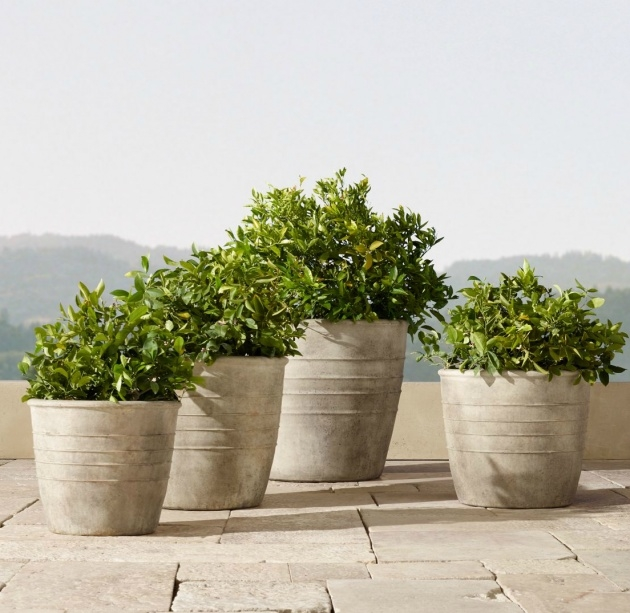 Ideas for Concrete Outdoor Planters Image