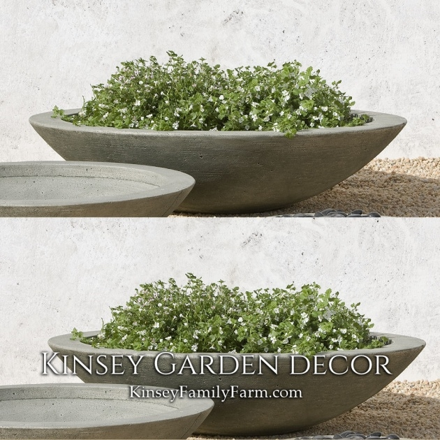 Ideas for Large Bowl Planter Photo