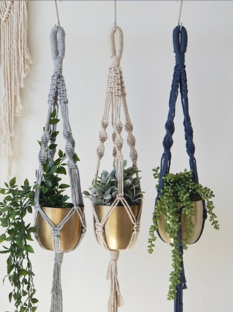 Ideas for Macrame Plant Hanger Image
