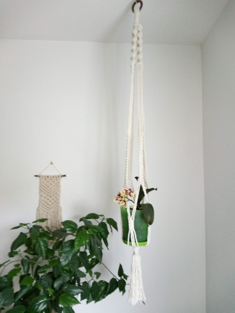Ideas for Modern Hanging Planter Photo