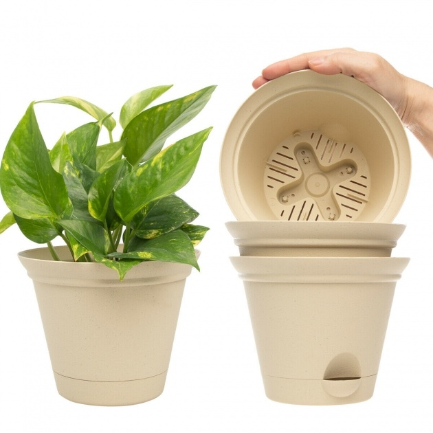 Ideas for Self Watering Planters Picture
