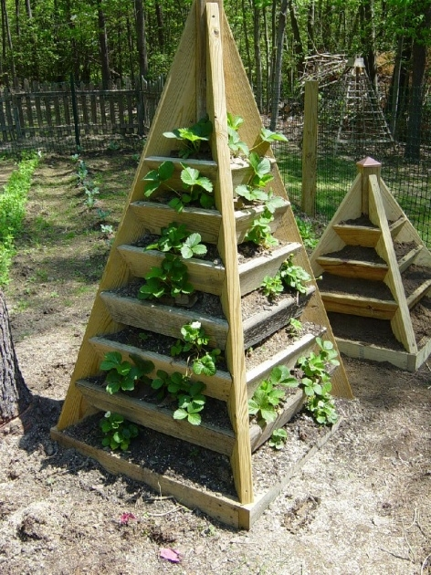 Ideas for Strawberry Planter Plans Photo