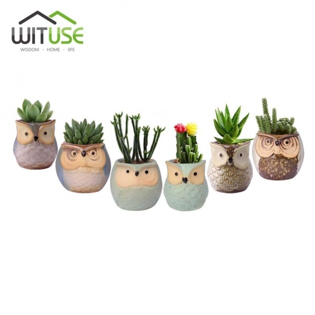 Imaginative Glazed Plant Pots Photo
