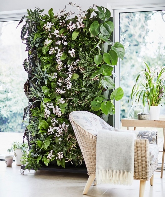 Imaginative How To Make A Plant Wall Picture