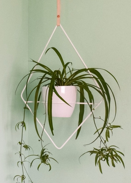 Imaginative Modern Hanging Planter Picture