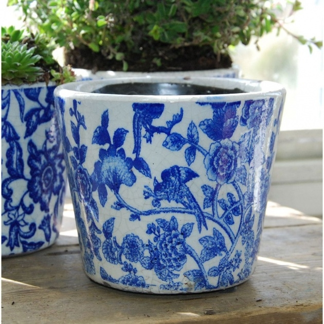 Innovative Blue And White Plant Pot Image