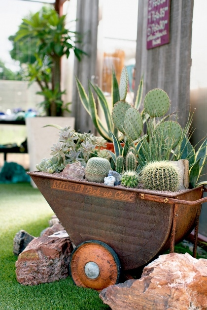Innovative Cactus Planter Ideas Image
