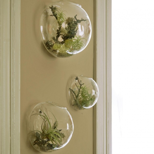 Innovative Decorative Wall Planters Image