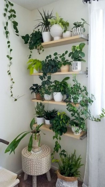 Innovative Indoor Pot To Beutify House Picture
