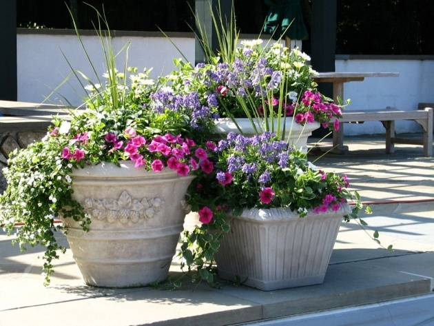 Innovative Patio Planter Ideas Photo