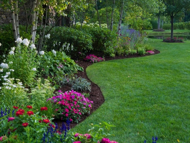Innovative Plant Border Ideas Picture