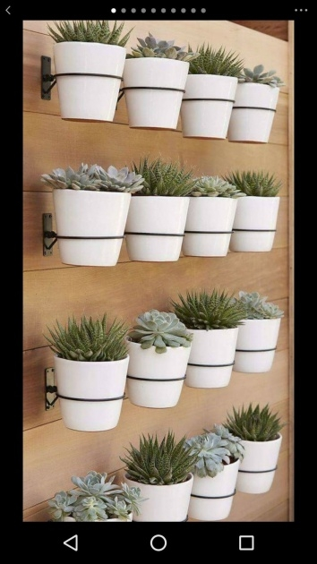 Innovative Wall Plant Pots Photo
