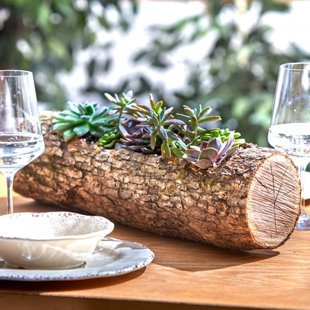 Innovative Wood Log Planter Photo